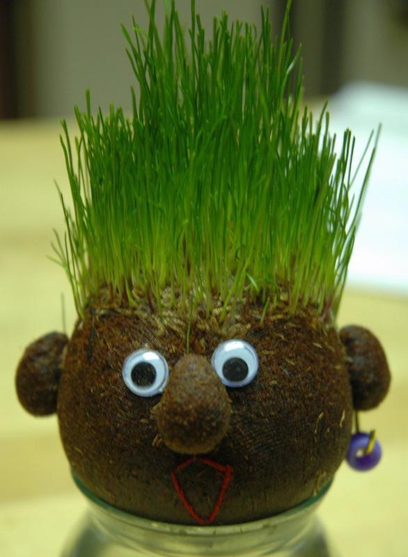 درست سبزه درختی Wheat Sprout, Sabzeh, Haft Seen spread 2014 - 1393